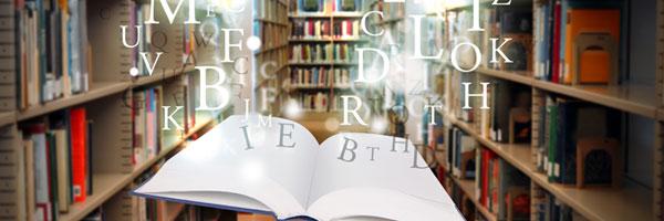 Hit med jobbet er godt på ej ud til bibliotekerne med en flot lektørudtalelse.